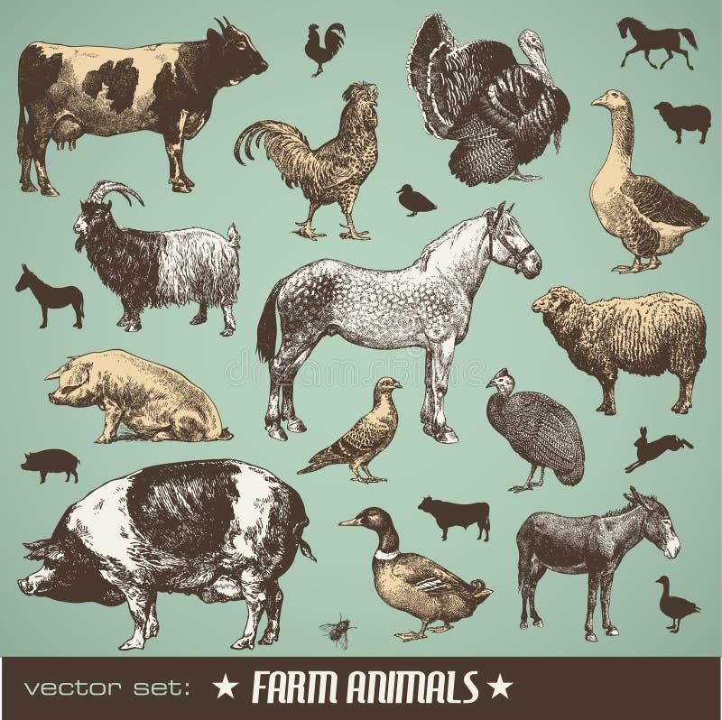Animais de exploração agrícola ilustração royalty free
