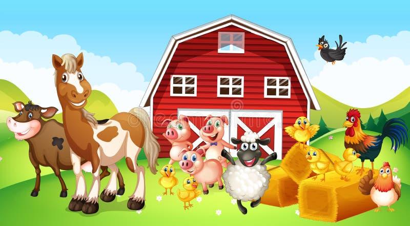 Animais de exploração agrícola que vivem na exploração agrícola ilustração do vetor