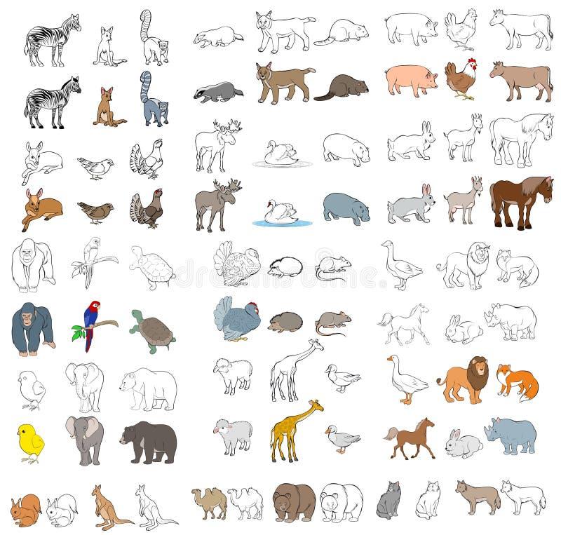Animais diferentes ajustados ilustração do vetor