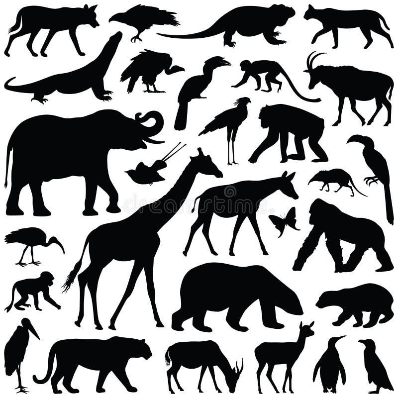 Animais do jardim zoológico ilustração royalty free