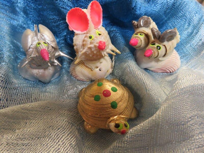 animais do shell fotografia de stock royalty free