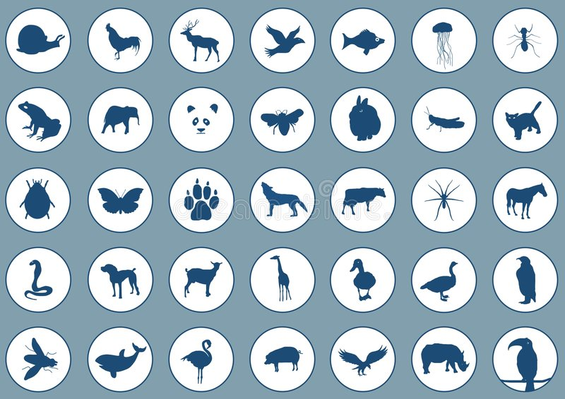 Animais dos ícones ilustração do vetor