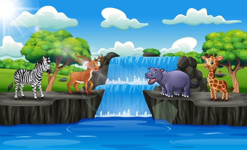 Animais felizes que apreciam na cachoeira ilustração do vetor