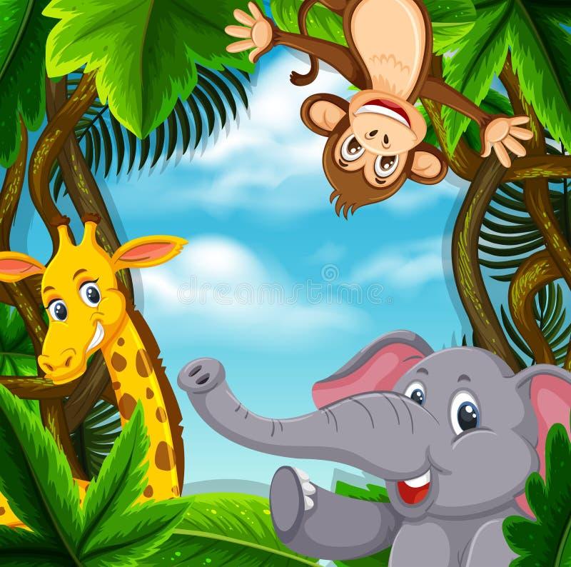 Animais na selva ilustração do vetor