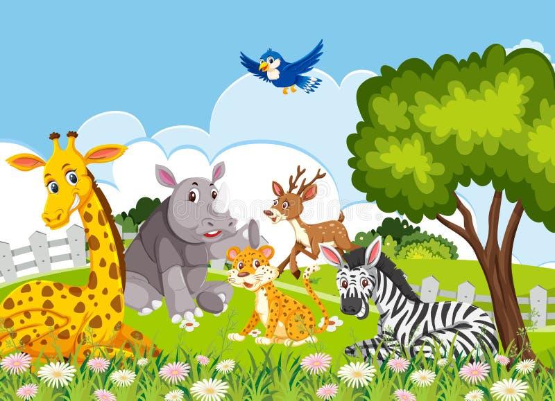 Animais na selva ilustração stock