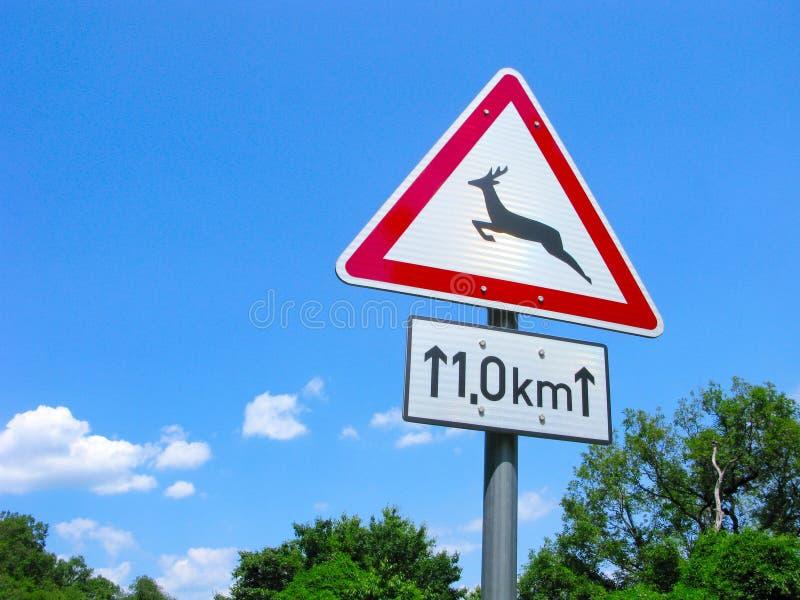 Animais selvagens de sinal de estrada fotografia de stock