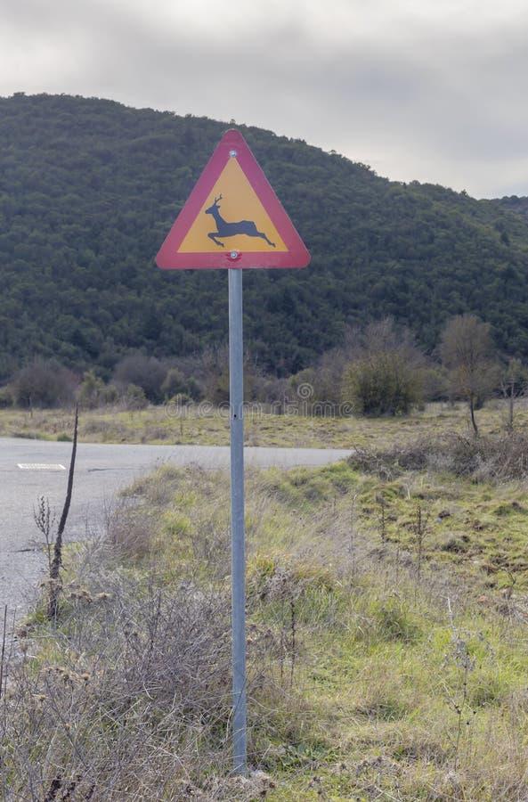 Animais selvagens do sinal 'em uma estrada rural foto de stock