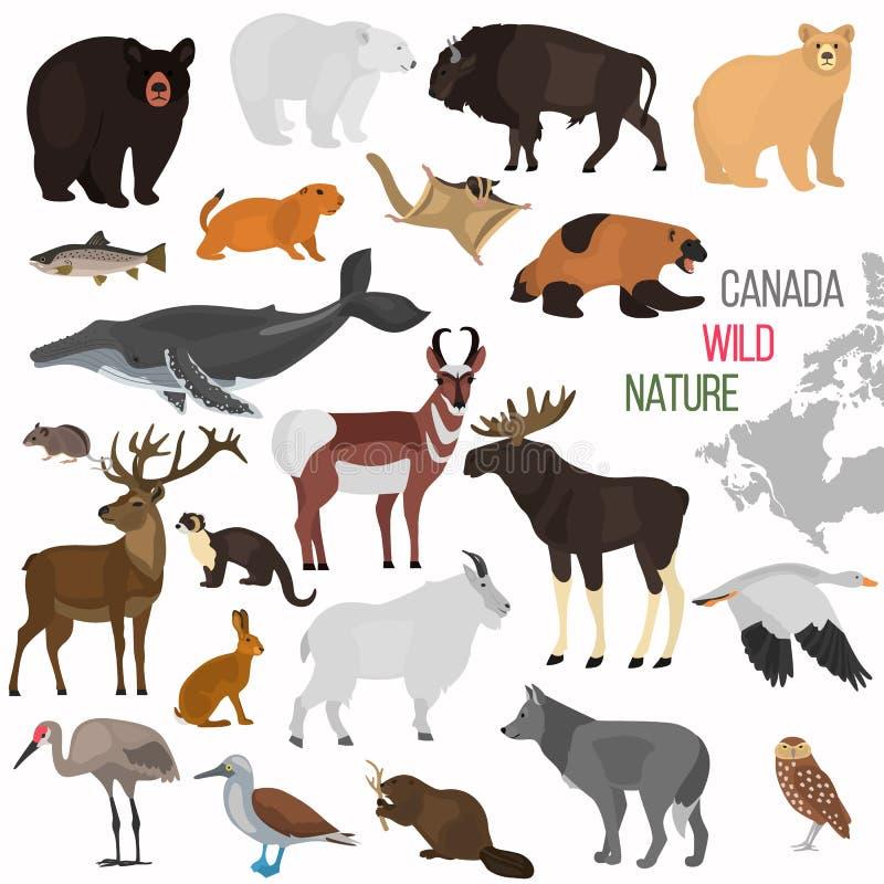 Animais selvagens dos ícones lisos da cor de Canadá ajustados ilustração do vetor