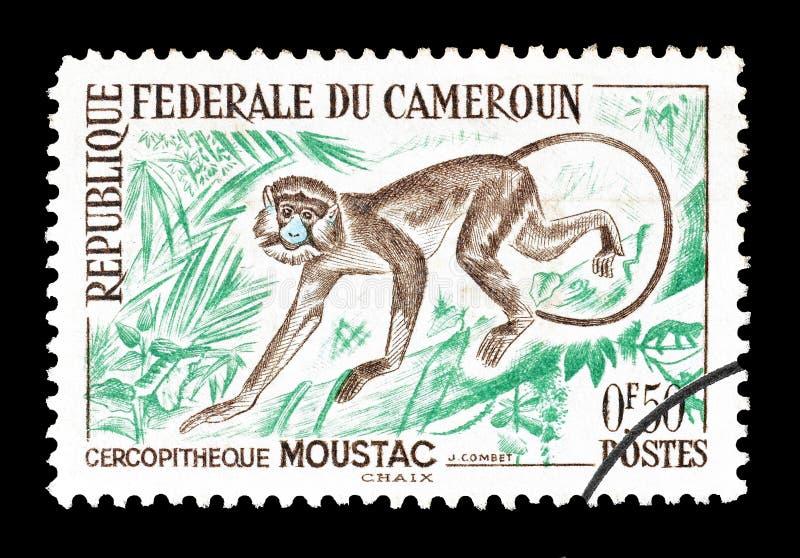 Animais selvagens em selos postais imagens de stock