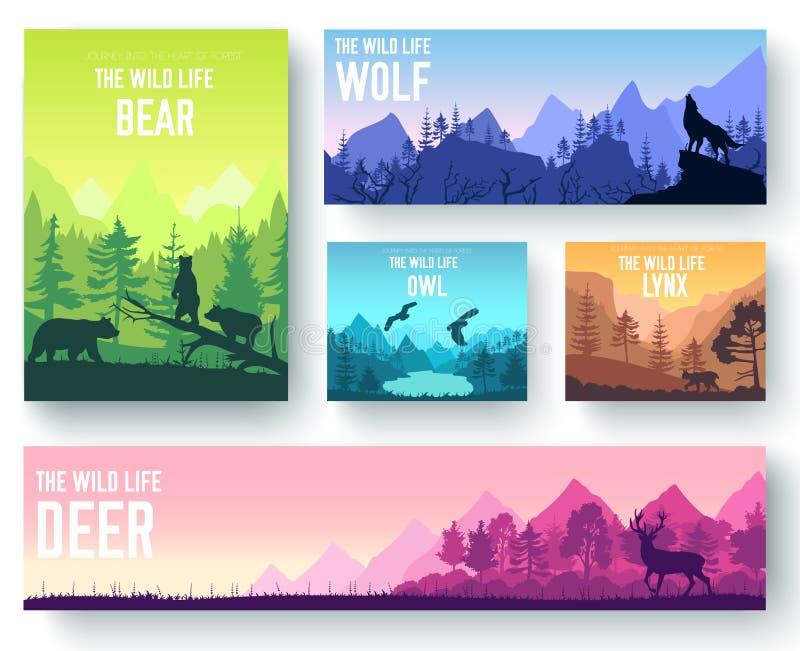 Animais selvagens no grupo de cartões do folheto do vetor da natureza Molde dos animais do inseto, compartimentos, cartaz, capa d ilustração stock