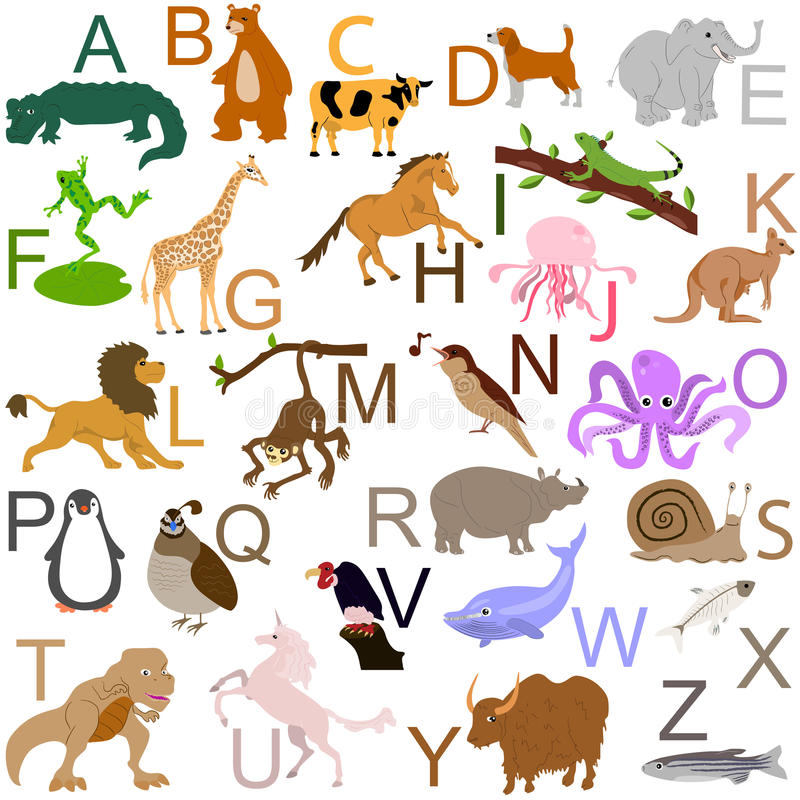 Animal alphabet stock photo