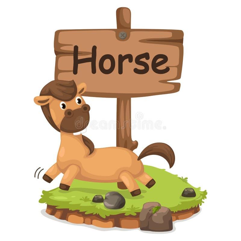 Animal alphabet letter H for horse stock illustration