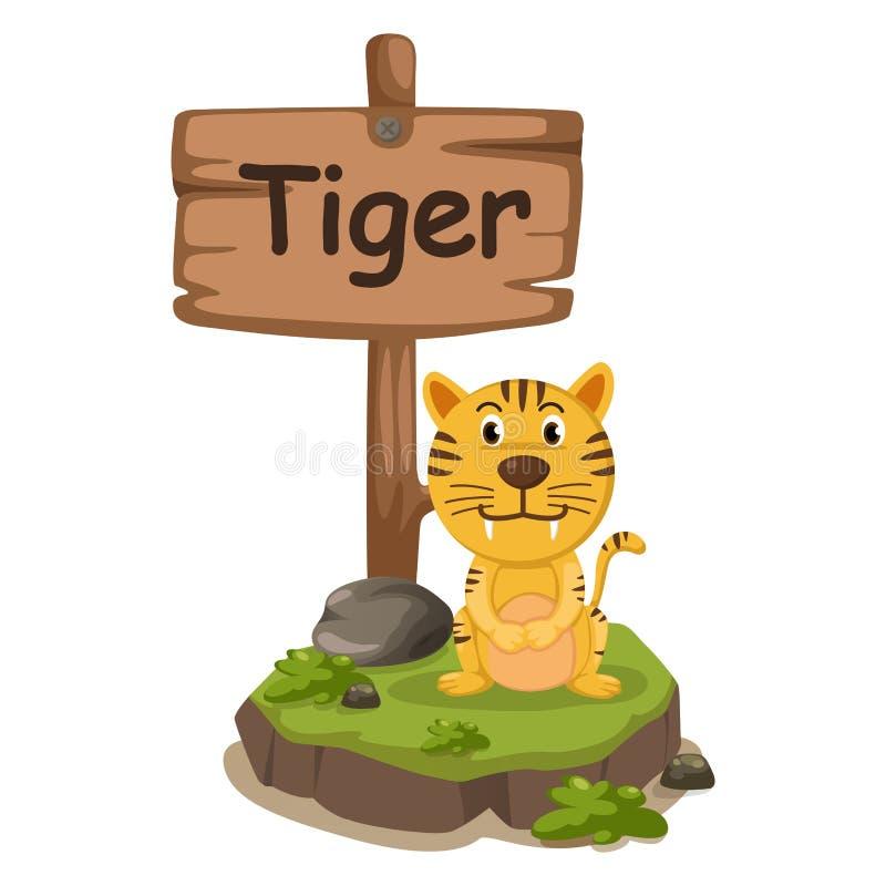 Animal alphabet letter T for tiger vector illustration