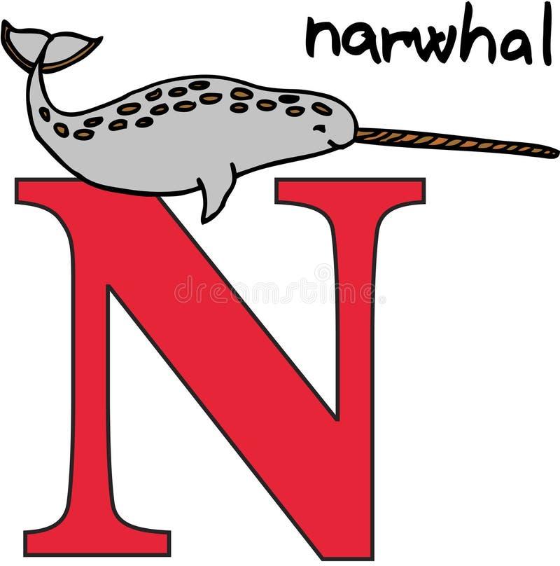 Animal alphabet N (narwhal). Animal alphabet - letter N (narwhal royalty free illustration
