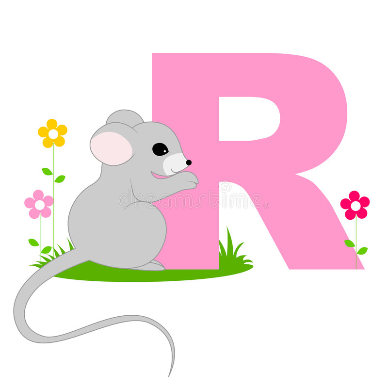 Animal alphabet R royalty free stock photography