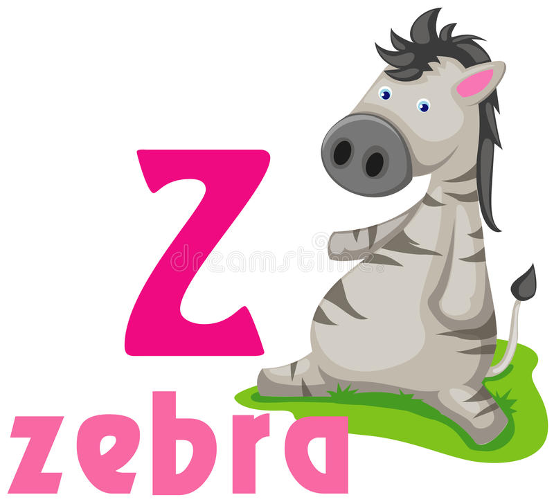 Animal alphabet Z royalty free stock photography