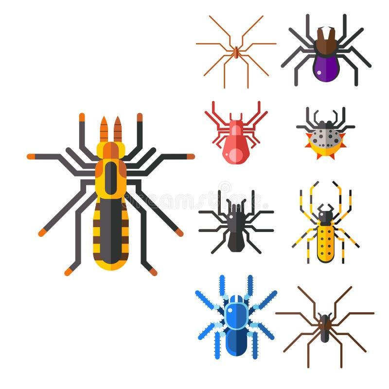 Animal assustador liso gráfico do medo do aracnídeo da silhueta da Web de aranha ilustração do vetor