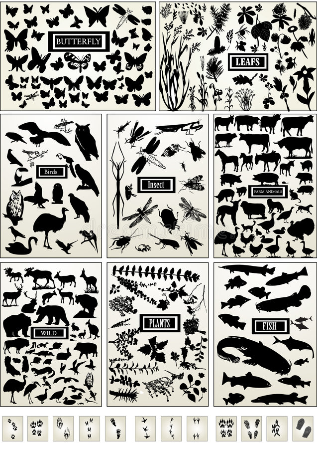 Animal, bird, fish, insect, butterfly and plant vector illustration
