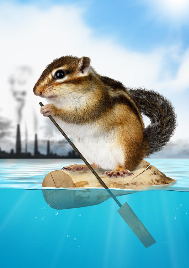 Animal Chipmunk floating away from the city pollution, ecology c stock photo