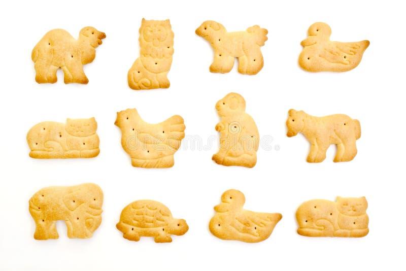 Animal crackers. Isolated on white background stock image
