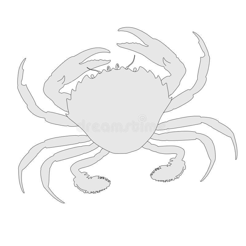 Animal crustáceo - cangrejo ilustración del vector