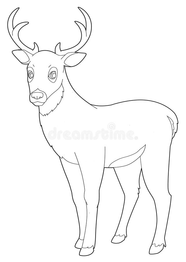 Animal de bande dessinée - cerf commun - d'isolement - page de coloration illustration stock