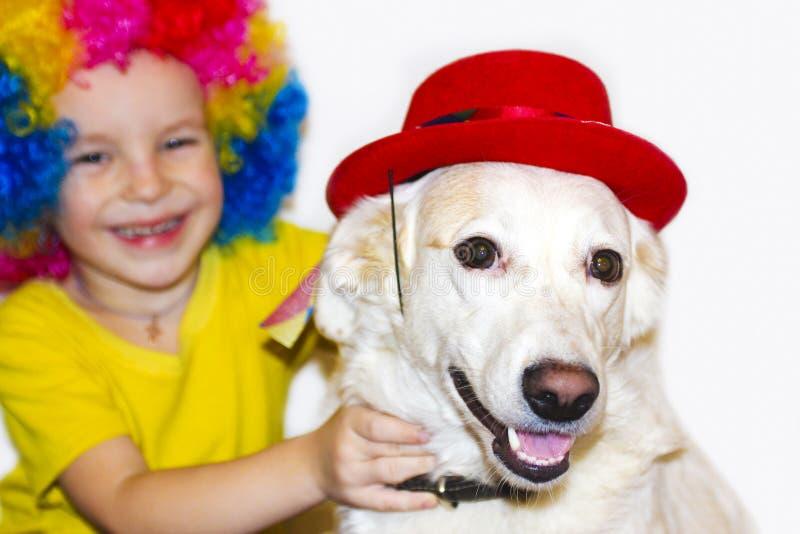 Animal de estimação favorito do agregado familiar e o rapaz pequeno imagens de stock royalty free