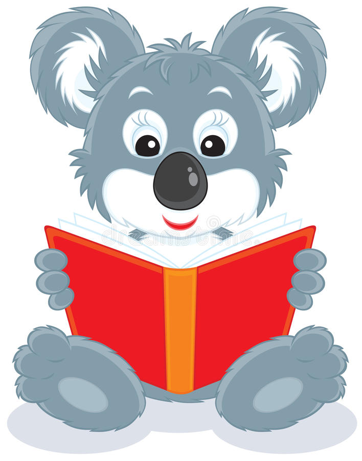 Animal de koala affichant un livre illustration libre de droits
