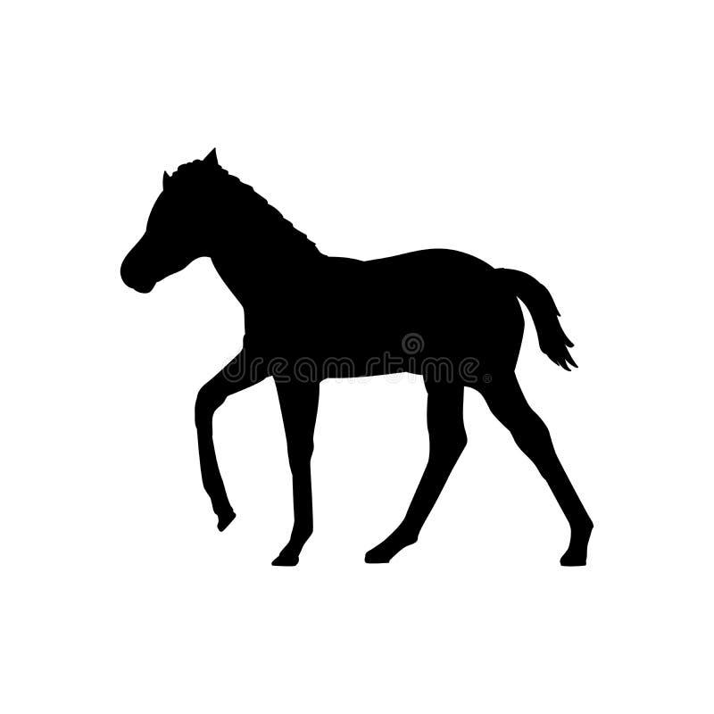 Animal de silhouette de noir de mammifère de ferme de cheval de poulain illustration de vecteur