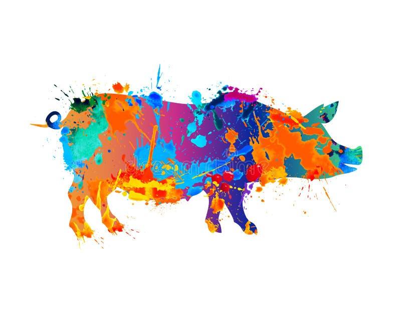 Animal del campo Cerdo Pintura del chapoteo ilustración del vector