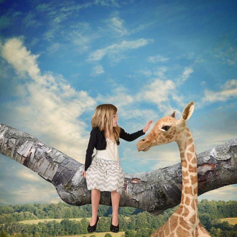 Animal do girafa das trocas de carícias da criança no ramo de árvore fotografia de stock royalty free