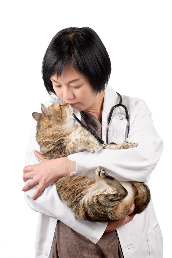 Download Animal doctor kiss cat stock photo. Image of image, lady - 18991588