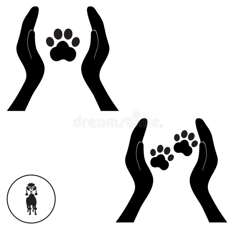 Animal dog paw in people hand 1 stock image