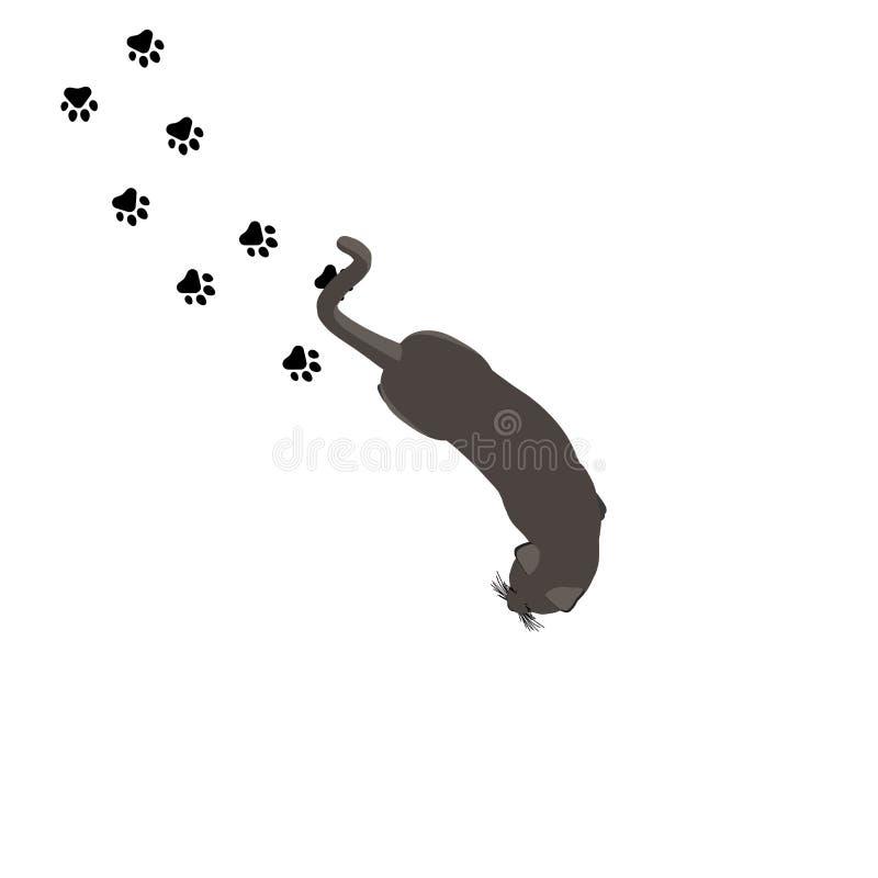 Animal doméstico animal aislado lindo del ejemplo del negro del vector de la opinión superior del gato realista ilustración del vector