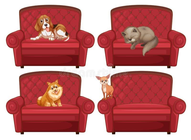 Animal doméstico en el sofá libre illustration