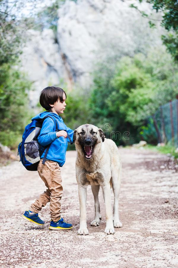 Animal doméstico y niño de la amistad imagen de archivo