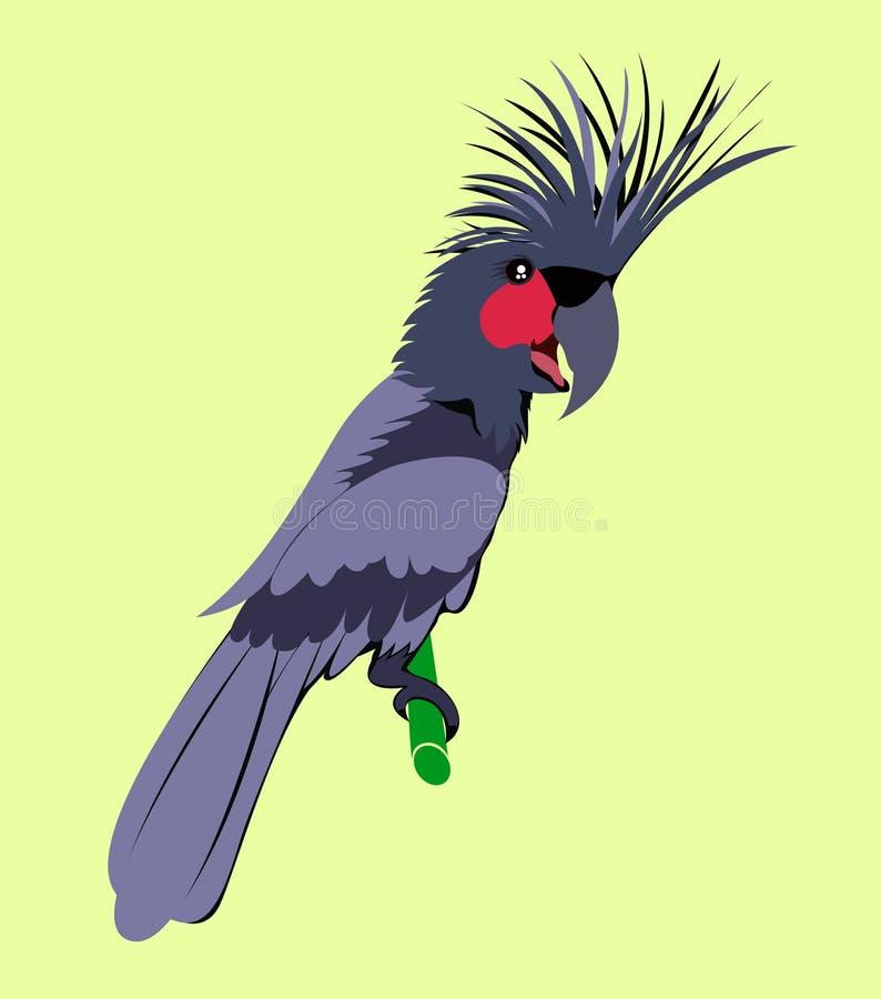 Animal dos desenhos animados, cacatua, fotografia de stock