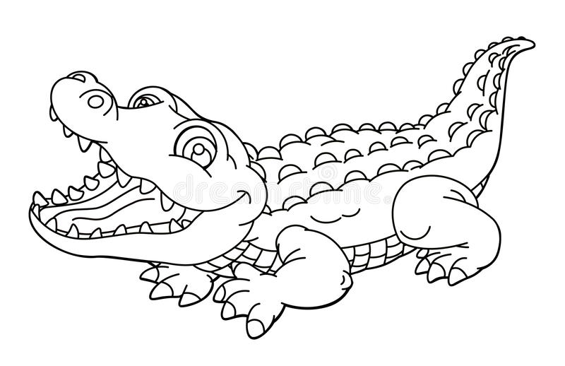 Animal Dos Desenhos Animados Jacar 233 Caricatura