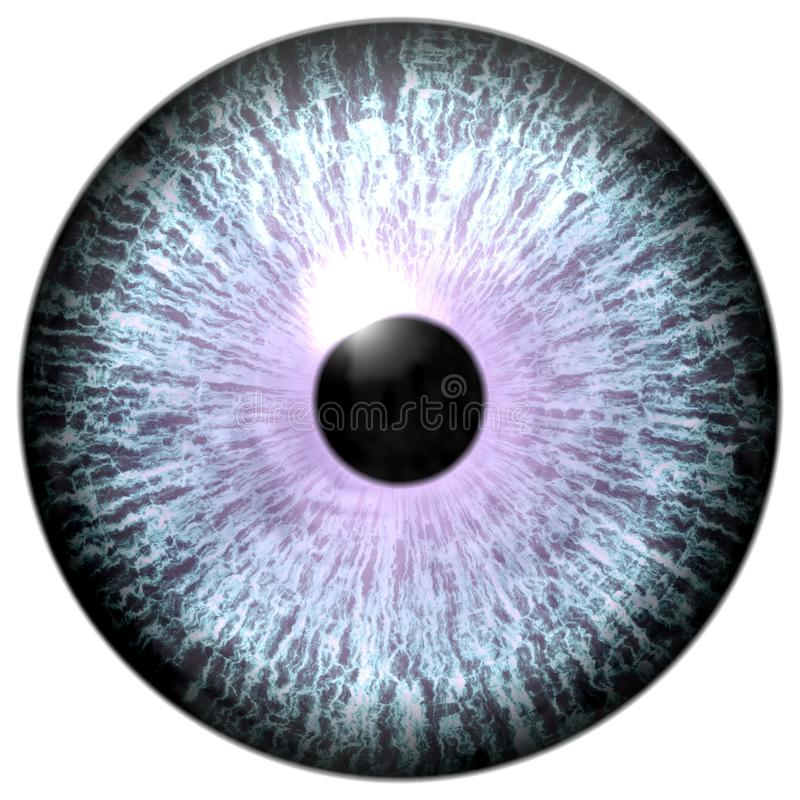 Animal eyeball with purple round, wolf 3d eye with dangerous view, isolated white background.  stock photos