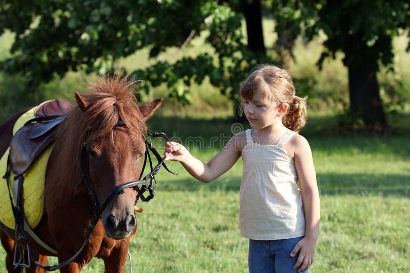 Animal familier de cheval de petite fille et de poney sur le champ photo stock