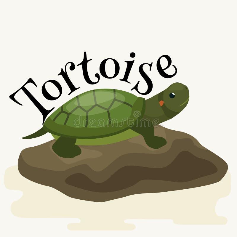 Animal familier de tortue pour la maison, animal de reptile illustration stock