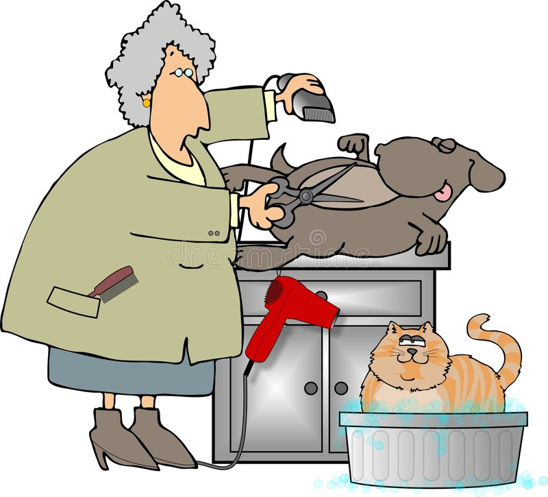 Animal familier Groomer illustration de vecteur