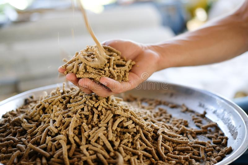 Animal feed. mixed fodder pellet for fish. Chicken stock photos