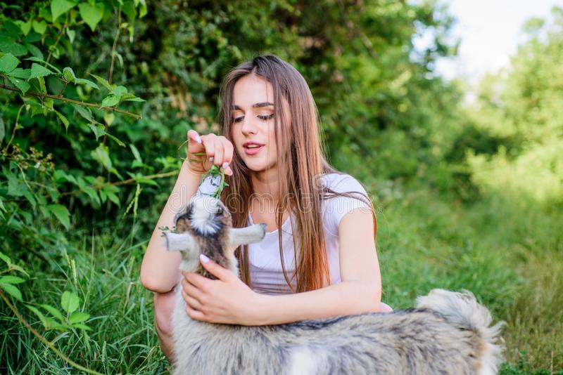 Animal first. Animals are our friends. happy girl love goat. village weekend. summer day. Love and protect animals. Contact zoo. veterinarian goat. woman vet royalty free stock photo