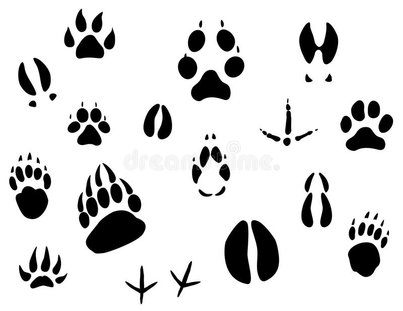 Download Animal footprints stock vector. Image of icon, claw, hand - 13841498