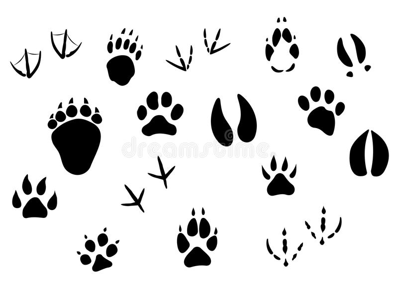 Download Animal Footprints And Tracks Stock Vector - Image: 28223464