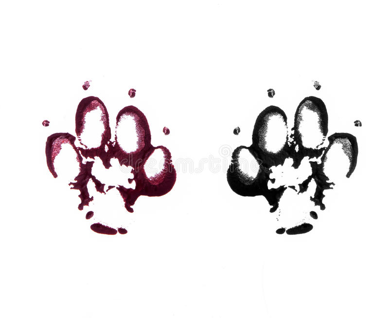 Animal footprints on white. Black nad red bloody footprints of animal stock photos