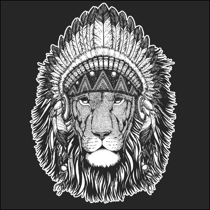 Animal frais de lion sauvage portant la coiffe indienne indigène avec l'image tirée par la main de style chic de Boho de plumes p illustration de vecteur