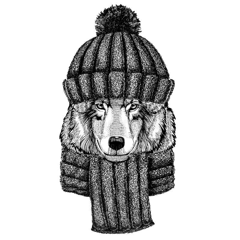 Animal frais animal de Wolf Dog Wild utilisant le chapeau tricoté d'hiver Chapeau chaud de Noël de calotte de coiffe pour le tato illustration stock