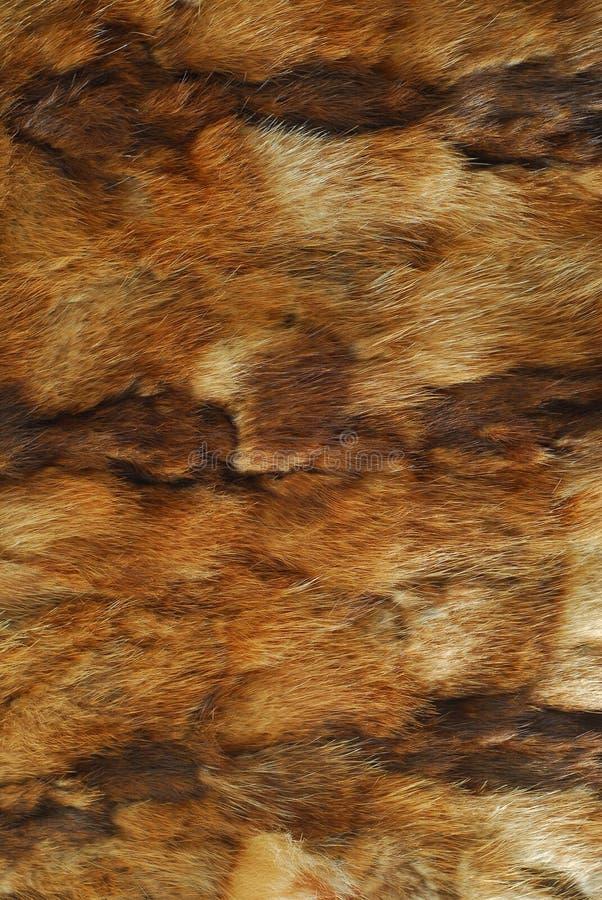 Download Animal fur pattern stock image. Image of fury, brown - 22842419